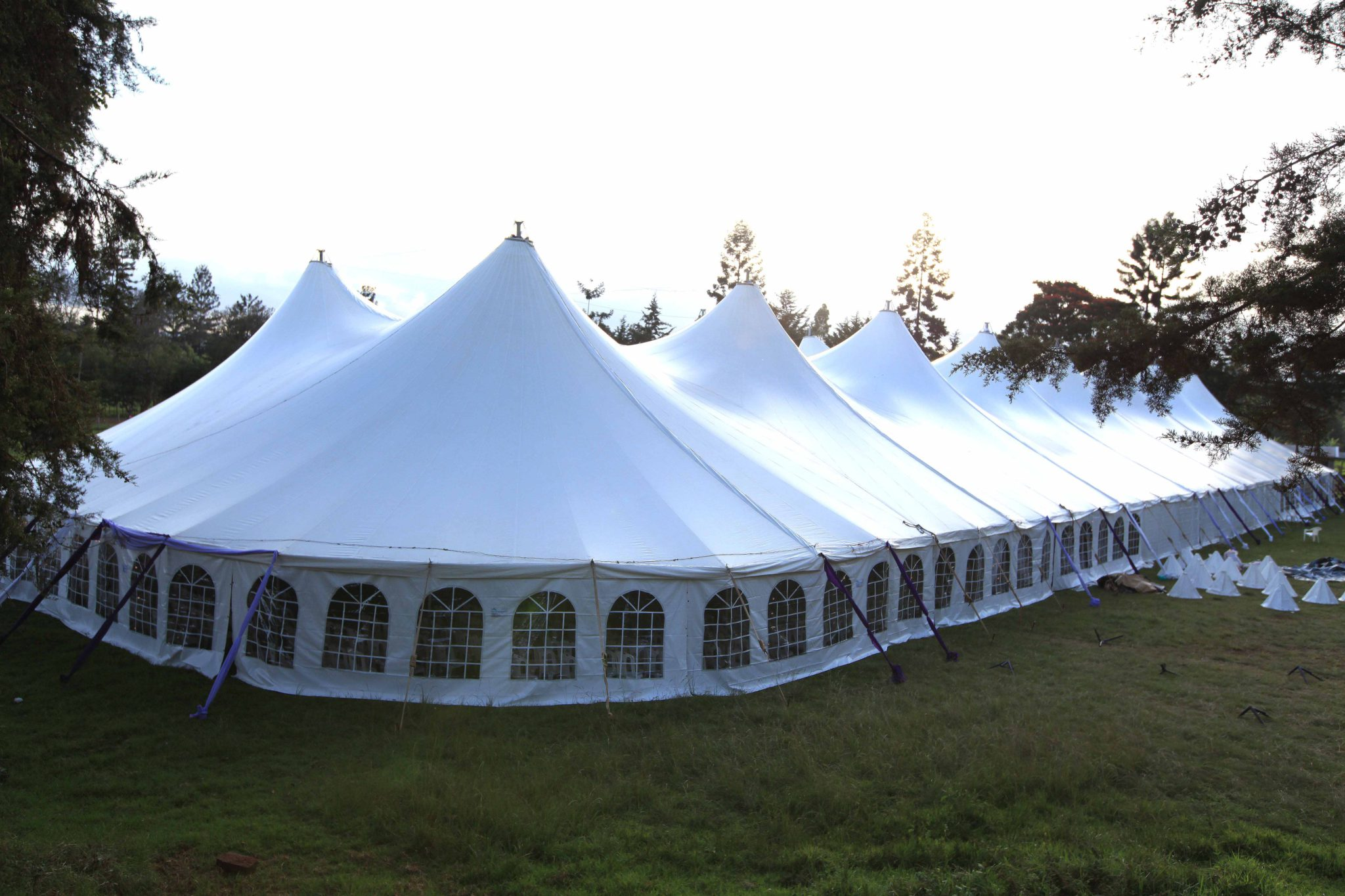 Apine Tent White For Sale
