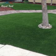 Grass2 180×180