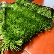 Grass3 180×180