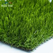 Grass8 180×180