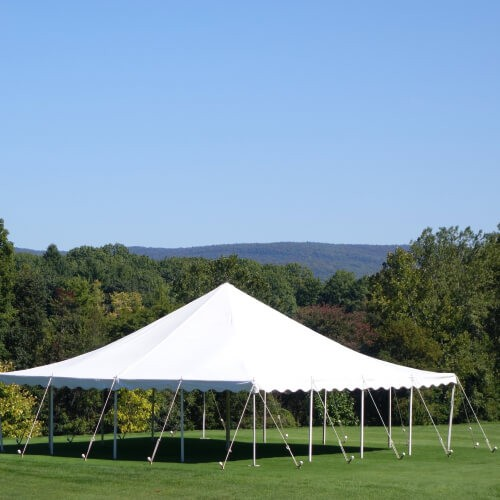 preg and pole tent for sale
